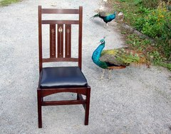 Chair and friends.